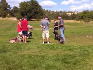 GuardianServiceDogsLLC-service dog training-group socialization