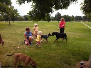 puppy class socialization rosie nicole2